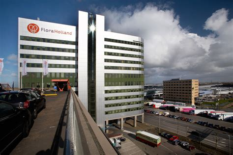 FloraHolland turnover grows by 1